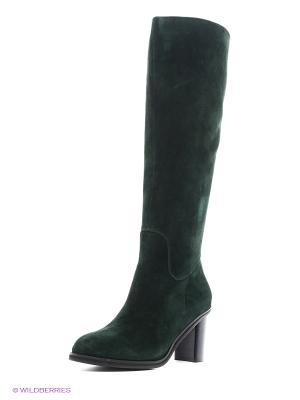 Сапоги Alba. Цвет: темно-зеленый