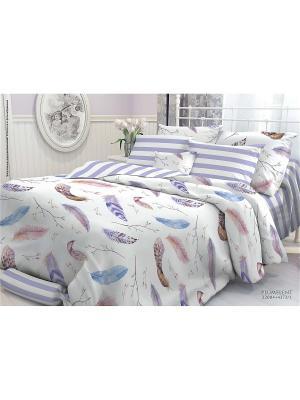 Комплект постельного белья ЕВРО, VEROSSA,  наволочки 70*70см и 50*70см, Plumelent Verossa. Цвет: серо-голубой, сиреневый, темно-фиолетовый