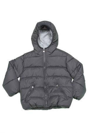 Куртка Dodipetto. Цвет: серый