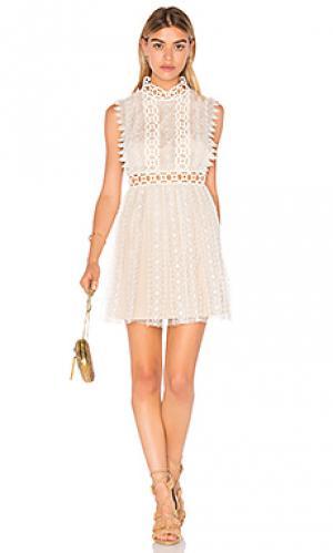 Обегающее сверху и плиссированное от пояса платье forever lace Free People. Цвет: кремовый