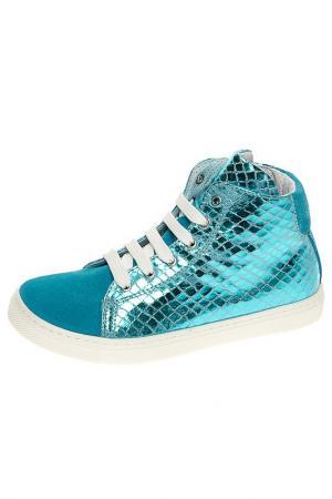 Ботинки CIAO. Цвет: голубой