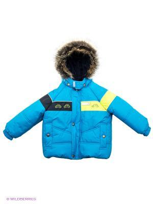 Куртка Kerry. Цвет: голубой, желтый
