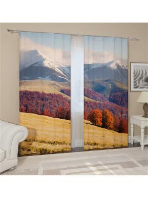 Фотошторы Альпийский пейзаж Сирень. Цвет: красный, белый, серый, коричневый