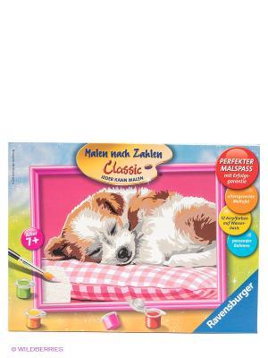 Раскраска по номерам Спящий щенок Ravensburger. Цвет: голубой, желтый, зеленый, коричневый, розовый