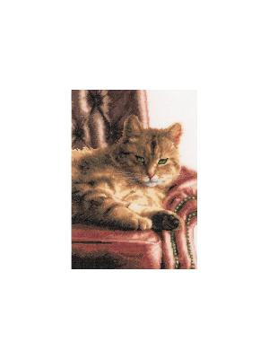 Набор для вышивания Relaxed Tabby /Отдых Тебби/ 24*34см Vervaco. Цвет: бордовый, коричневый, светло-коричневый