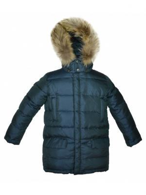 Куртка BORELLI. Цвет: зеленый