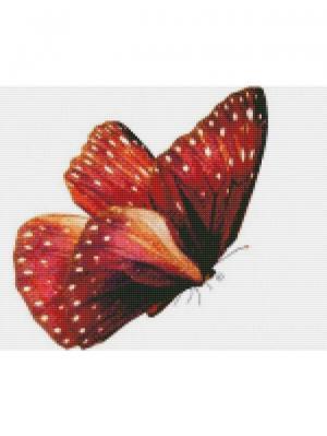 Алмазная мозаика Бабочка Красный монарх Цветной. Цвет: белый