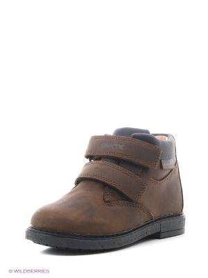 Ботинки GEOX. Цвет: коричневый, темно-синий