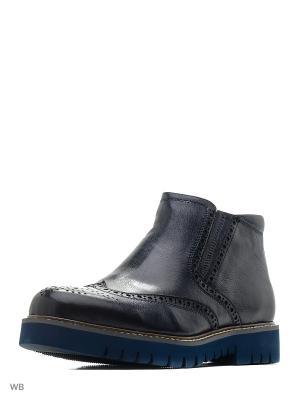 Ботинки Premier. Цвет: синий