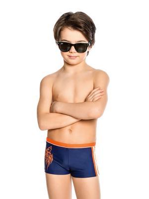 Плавки для мальчиков Nirey. Цвет: темно-синий, оранжевый, белый