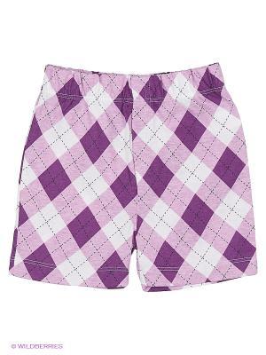 Шортики Наша Мама. Цвет: фиолетовый