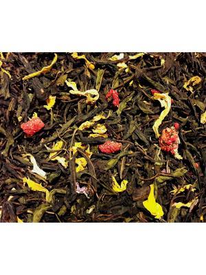 Иван-чай Гармония. Цвет: сливовый