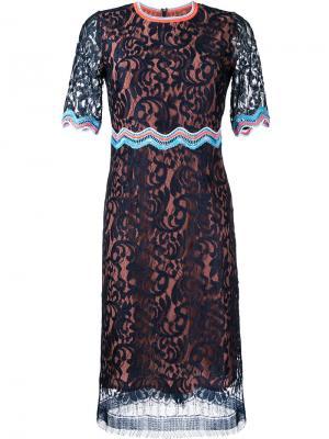 Кружевное платье с контрастной оторочкой Peter Pilotto. Цвет: синий