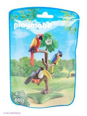 Зоопарк: Тропические птицы Playmobil. Цвет: белый, красный, синий, черный