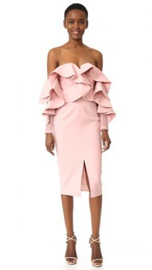 Миди-платье Alessa с открытыми плечами Talulah. Цвет: розовый