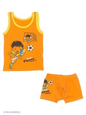Комплект белья NICOLETTA. Цвет: оранжевый