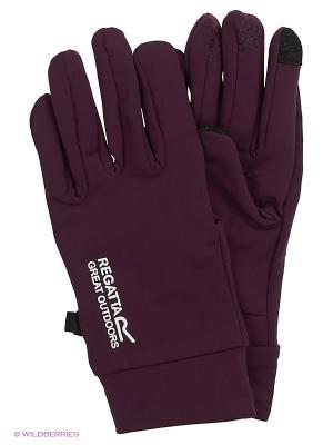 Перчатки Touchtip Str Glv REGATTA. Цвет: бордовый