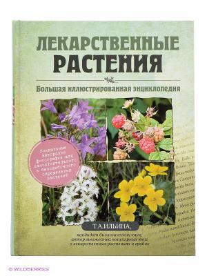 Лекарственные растения. Большая иллюстрированная энциклопедия Эксмо. Цвет: зеленый
