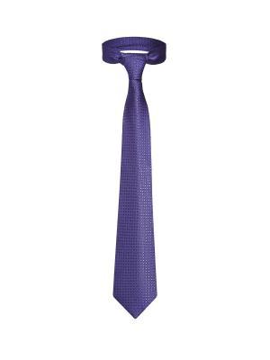 Классический галстук Деловой Лос Анджелес со стильным принтом Signature A.P.. Цвет: фиолетовый