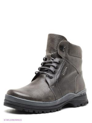 Ботинки BELWEST. Цвет: серо-коричневый