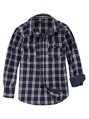 Рубашка Endo. Цвет: белый, синий