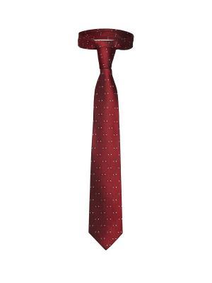 Классический галстук Казино Рояль со стильным принтом Signature A.P.. Цвет: красный, голубой, молочный
