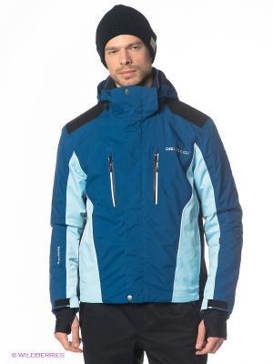 Куртка DIELSPORT. Цвет: синий, голубой