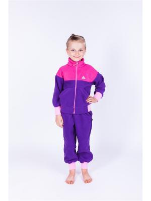 Штаны Чемпион ЛисФлис. Цвет: фиолетовый, розовый