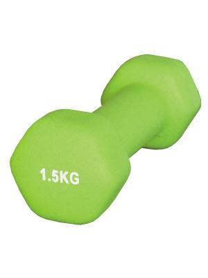 Гантель неопреновая 1,5 кг Atemi, AD-01-1,5 Atemi. Цвет: светло-зеленый