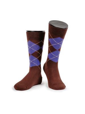 Oxford носки мужские MARREY. Цвет: коричневый, фиолетовый, зеленый
