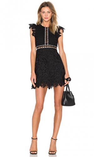Кружевное мини-платье wild flower & geo Cynthia Rowley. Цвет: черный