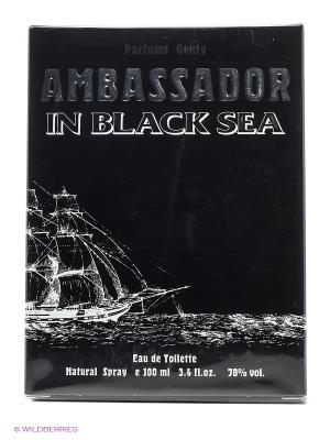 AMBASSADOR IN BLACK SEA EDT 100 ML SPRAY PARFUMS GENTY. Цвет: прозрачный