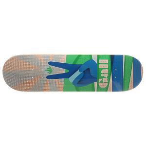 Дека для скейтборда  Gall Peacemaker Multi 31.75 x 8.25 (21 см) Habitat. Цвет: мультиколор