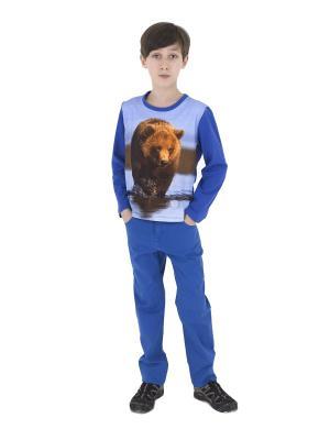 Пуловер TINYFOX. Цвет: синий