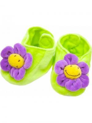 Пинетки велюровые цветочки FELICE. Цвет: салатовый, фиолетовый
