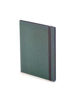 Еженедельник в5 tango (зеленый) Bruno Visconti. Цвет: зеленый