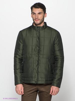 Куртка ALF SPORT. Цвет: зеленый