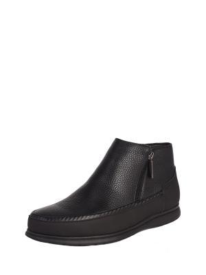 Ботинки мужские зимние Pierre Cardin... Цвет: черный