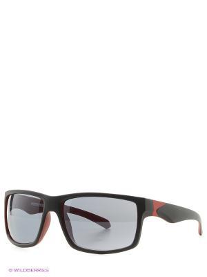 Солнцезащитные очки MS 05-012 18P Mario Rossi. Цвет: черный