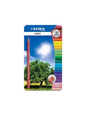 Lyra osiris 12цв,цветные карандаши в мет. коробке.. Цвет: синий, желтый, зеленый
