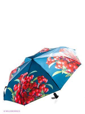 Зонт Flioraj. Цвет: синий, красный
