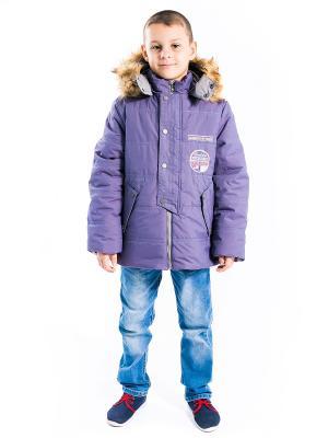 Куртка Сергей Аксарт. Цвет: сливовый