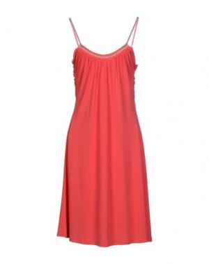 Платье до колена DIVINA. Цвет: коралловый