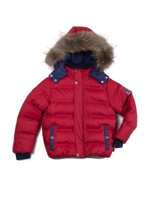 Куртка Sweet Berry. Цвет: красный