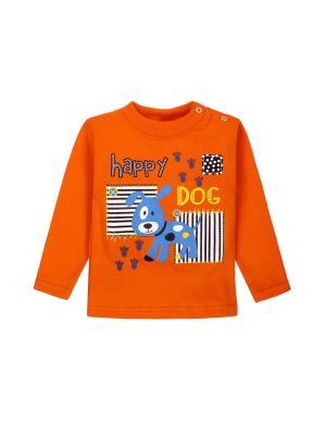 Лонгслив M&DCollection. Цвет: оранжевый