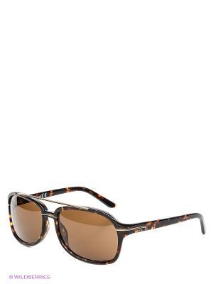 Солнцезащитные очки RE 355S 52E Replay. Цвет: коричневый