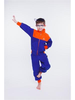 Штаны Чемпион ЛисФлис. Цвет: синий, оранжевый
