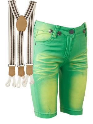 Шорты Nota Bene. Цвет: зеленый