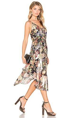 Платье со шнуровкой спереди Haute Hippie. Цвет: черный
