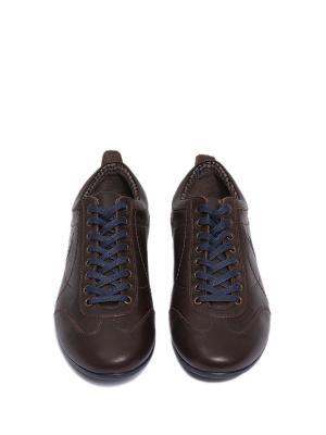 Туфли U.S. Polo Assn.. Цвет: коричневый